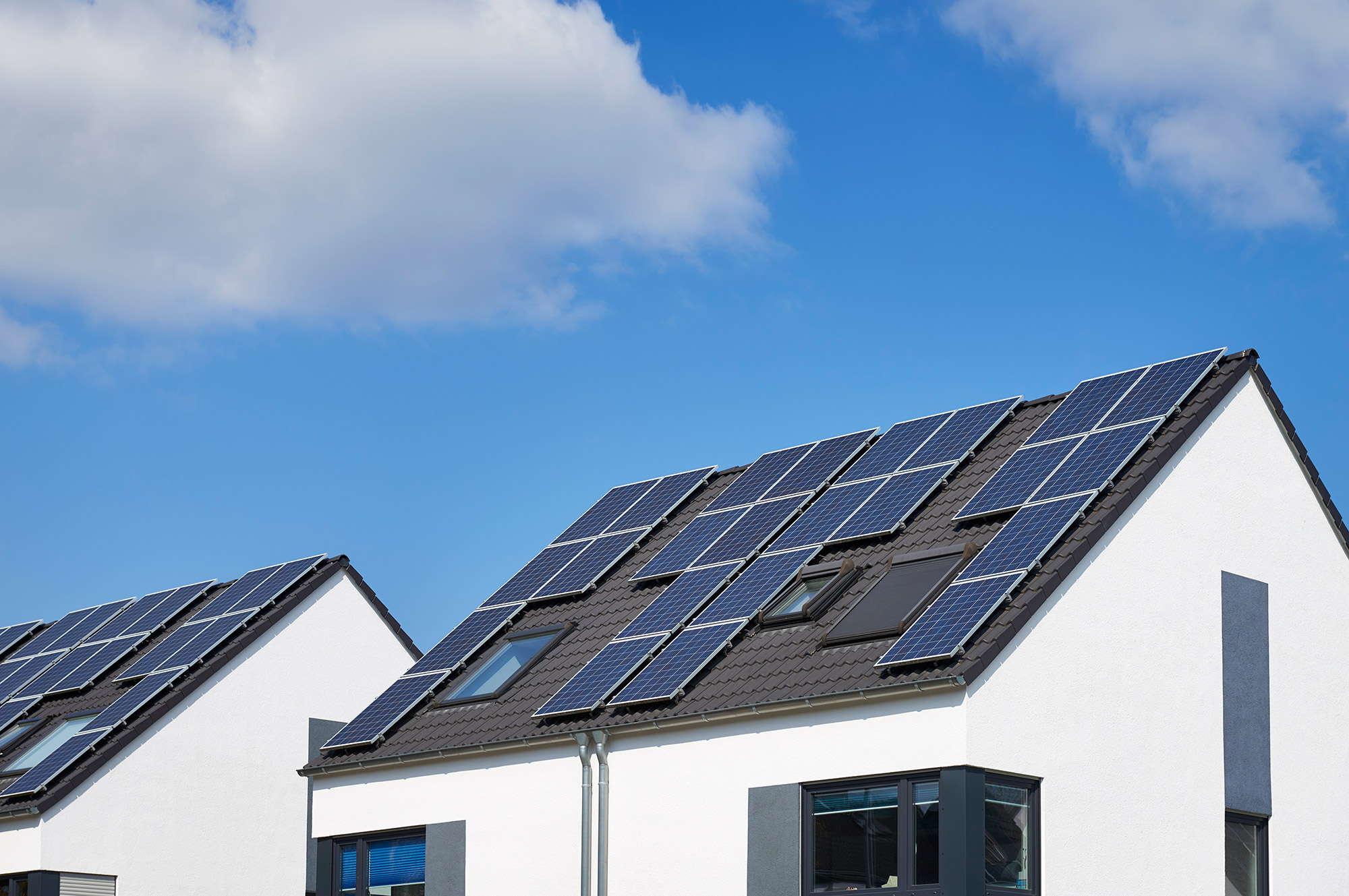 rooftops covered in solar panels under a blue sky